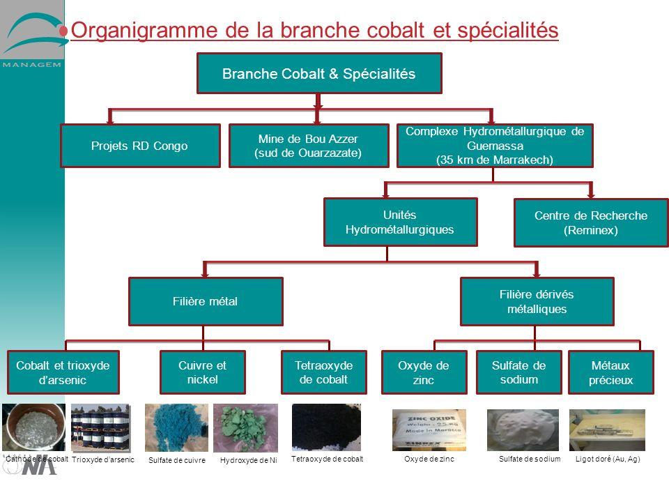 Organigramme de la branche cobalt et spécialités Mine de Bou Azzer (sud de Ouarzazate) Branche Cobalt & Spécialités Complexe Hydrométallurgique de Gue