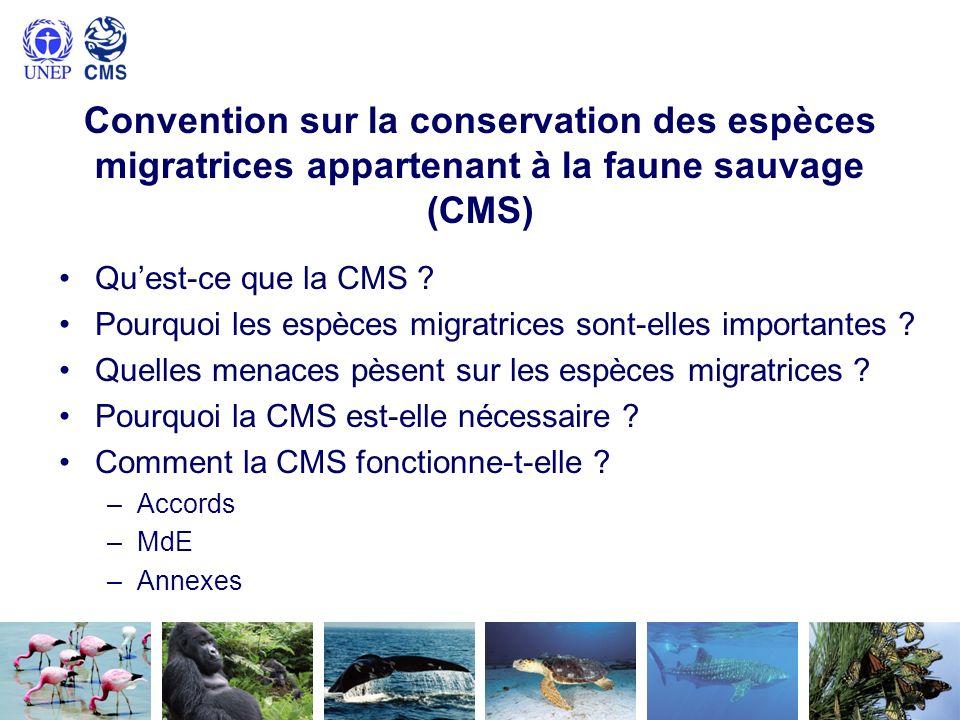 Convention sur la conservation des espèces migratrices appartenant à la faune sauvage (CMS) Quest-ce que la CMS ? Pourquoi les espèces migratrices son