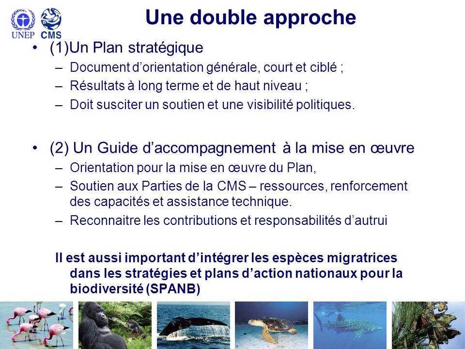 Une double approche (1)Un Plan stratégique –Document dorientation générale, court et ciblé ; –Résultats à long terme et de haut niveau ; –Doit suscite