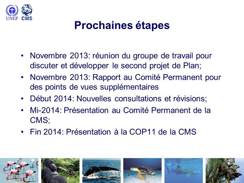 Prochaines étapes Novembre 2013: réunion du groupe de travail pour discuter et développer le second projet de Plan; Novembre 2013: Rapport au Comité P