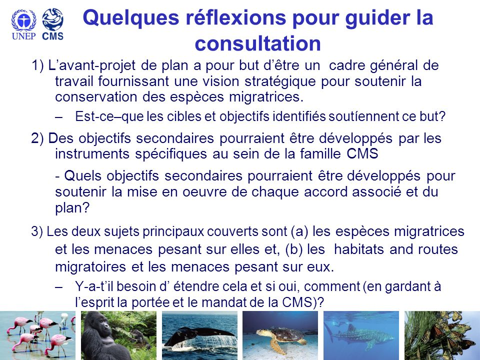 Quelques réflexions pour guider la consultation 1) Lavant-projet de plan a pour but dêtre un cadre général de travail fournissant une vision stratégiq