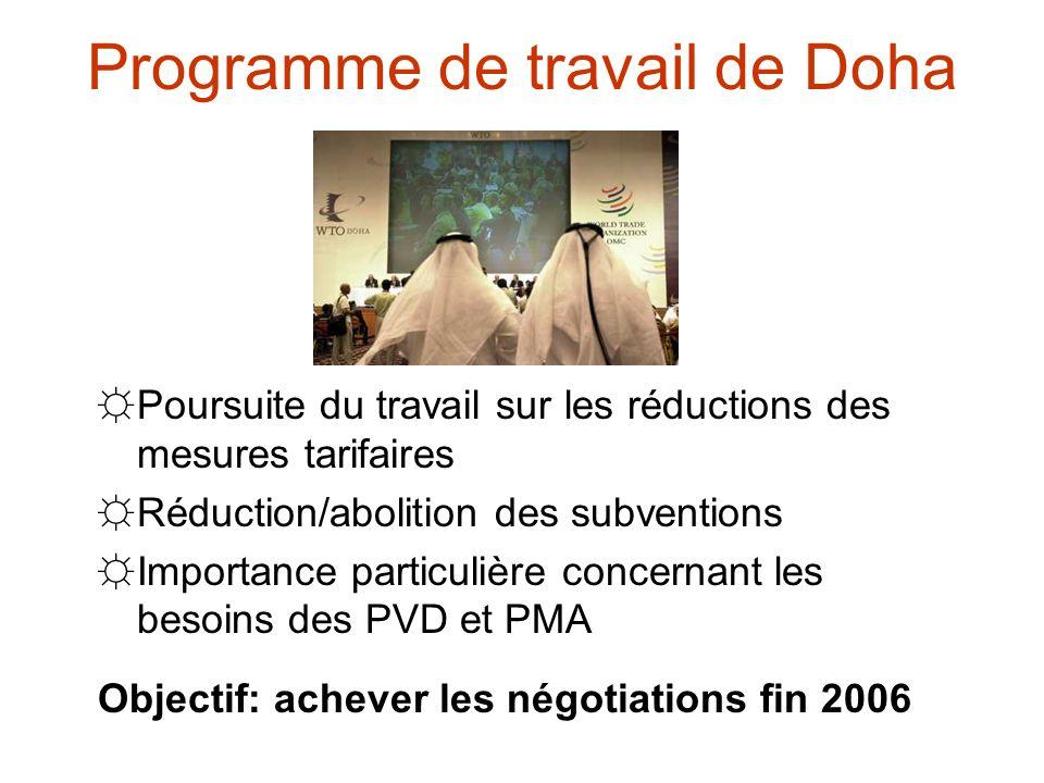 Programme de travail de Doha Poursuite du travail sur les réductions des mesures tarifaires Réduction/abolition des subventions Importance particulière concernant les besoins des PVD et PMA Objectif: achever les négotiations fin 2006