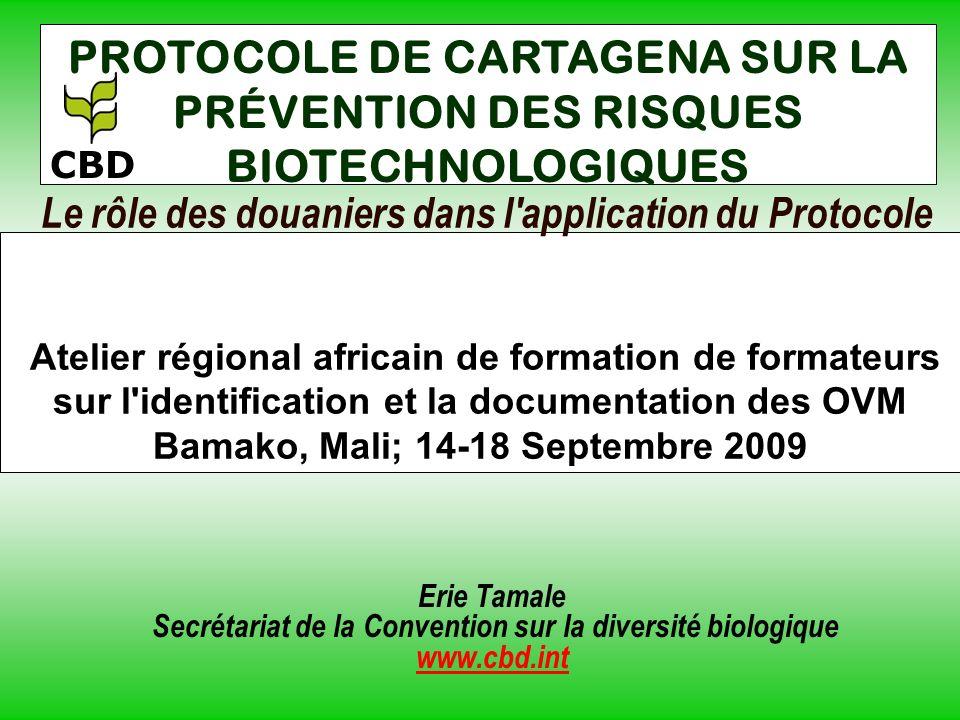 Le rôle des douaniers dans l application du Protocole Atelier régional africain de formation de formateurs sur l identification et la documentation des OVM Bamako, Mali; 14-18 Septembre 2009 Erie Tamale Secrétariat de la Convention sur la diversité biologique www.cbd.int PROTOCOLE DE CARTAGENA SUR LA PRÉVENTION DES RISQUES BIOTECHNOLOGIQUES CBD