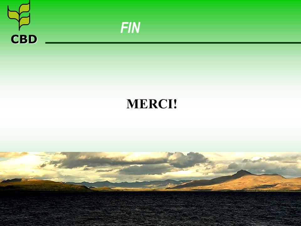 CBD FIN MERCI!