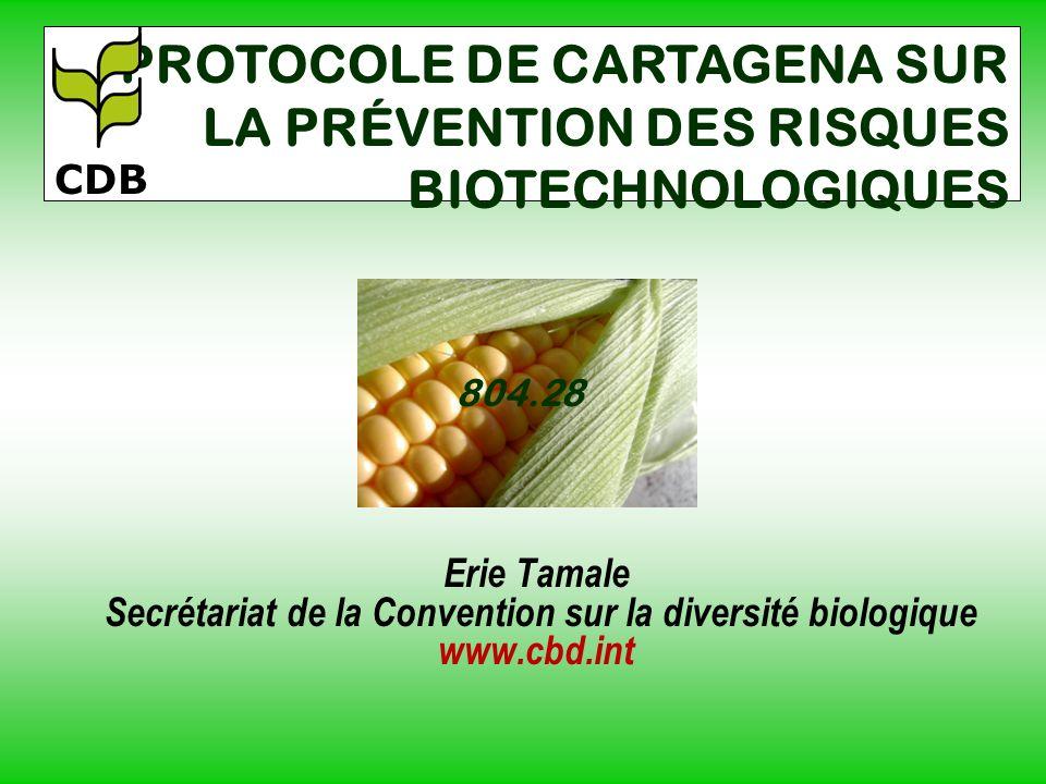 Erie Tamale Secrétariat de la Convention sur la diversité biologique www.cbd.int PROTOCOLE DE CARTAGENA SUR LA PRÉVENTION DES RISQUES BIOTECHNOLOGIQUE