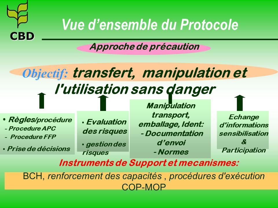 CBD Approche de précaution Objectif: transfert, manipulation et l'utilisation sans danger BCH, renforcement des capacités, procédures d'exécution COP-