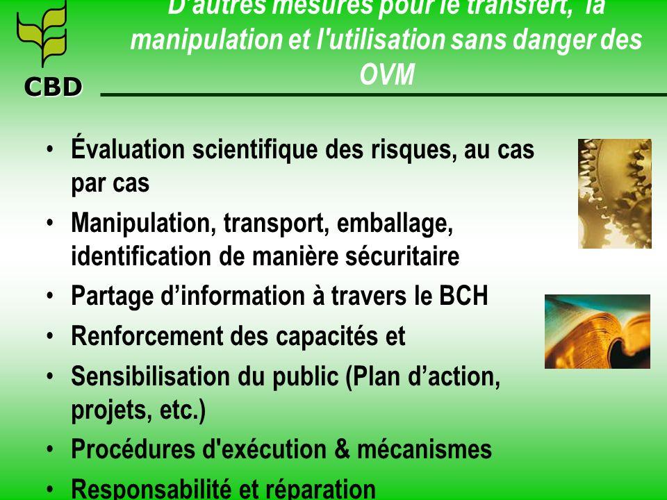 CBD Dautres mesures pour le transfert, la manipulation et l'utilisation sans danger des OVM Évaluation scientifique des risques, au cas par cas Manipu