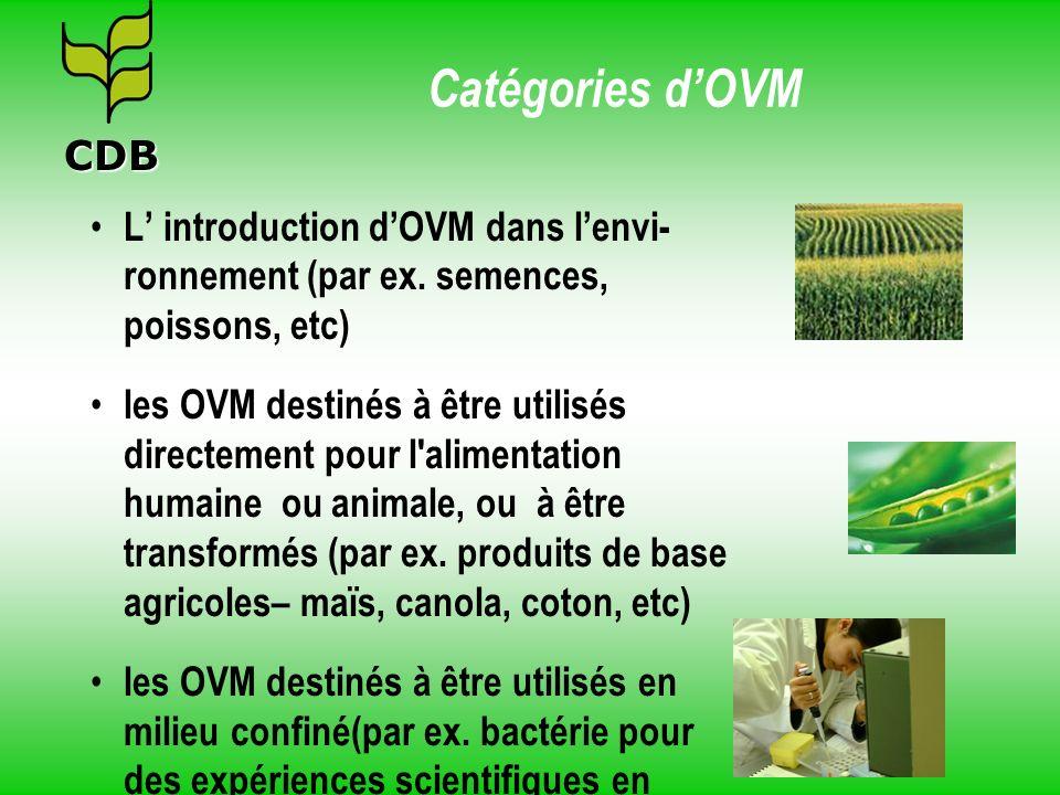 Catégories dOVM L introduction dOVM dans lenvi- ronnement (par ex. semences, poissons, etc) les OVM destinés à être utilisés directement pour l'alimen
