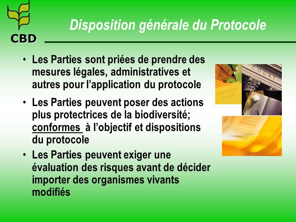 CBD Disposition générale du Protocole Les Parties sont priées de prendre des mesures légales, administratives et autres pour lapplication du protocole
