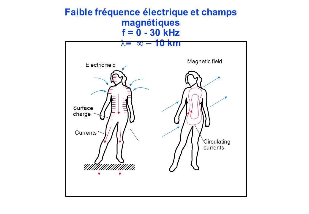 Faible fréquence électrique et champs magnétiques f = 0 - 30 kHz = – 10 km Currents Surface charge Electric field Magnetic field Circulating currents