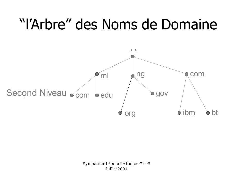 Symposium IP pour l Afrique 07 - 09 Juillet 2003 ml infocom lArbre des Noms de Domaine Top Level