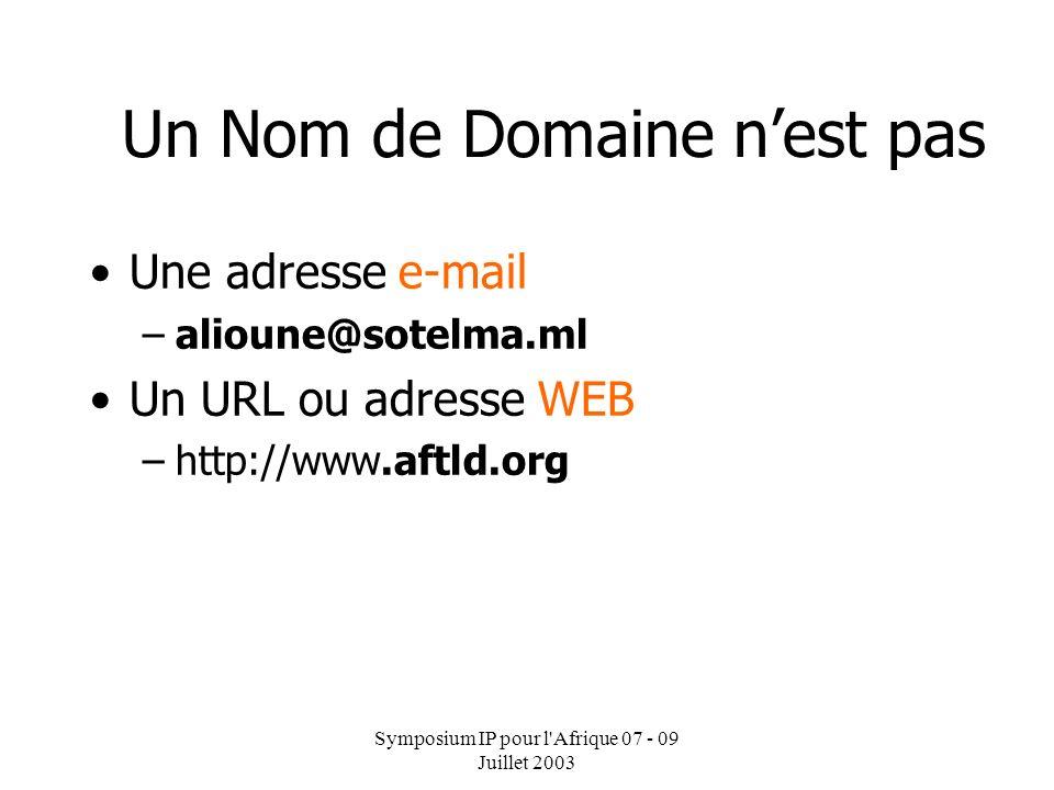 Symposium IP pour l'Afrique 07 - 09 Juillet 2003 Un Nom de Domaine NomAdresse IP dogon.sotelma.ml 208.144.208.1 Prend simplement un nom et retourne un