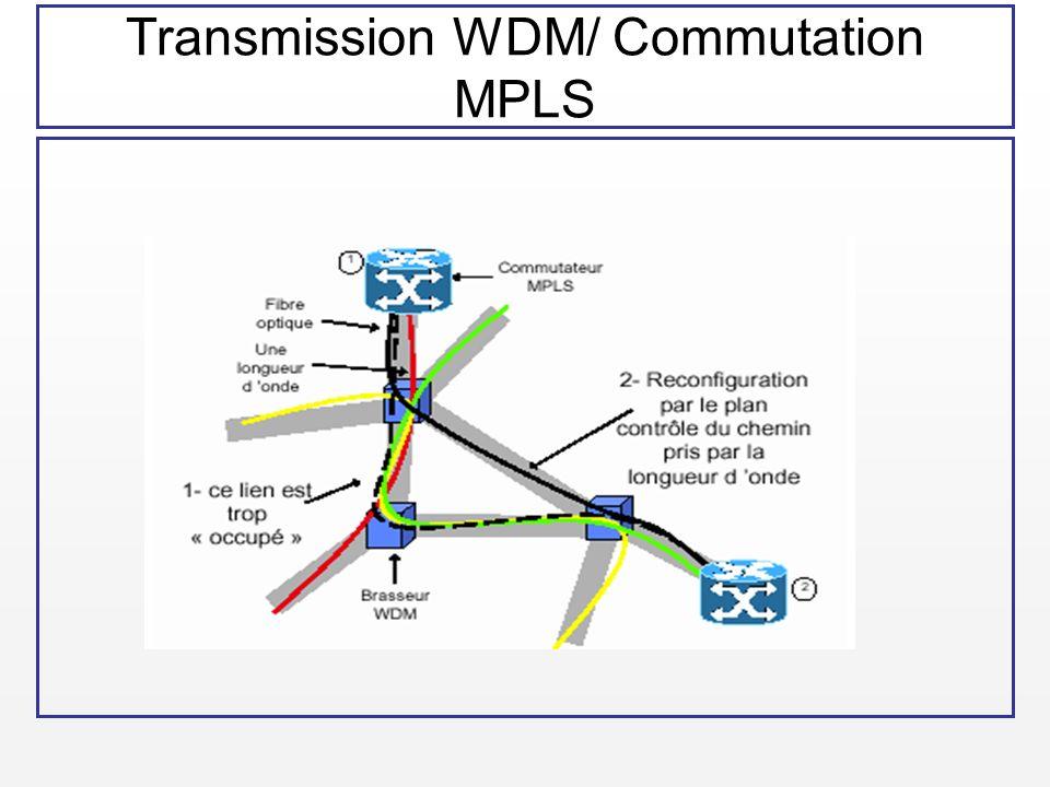 Transmission WDM/ Commutation MPLS