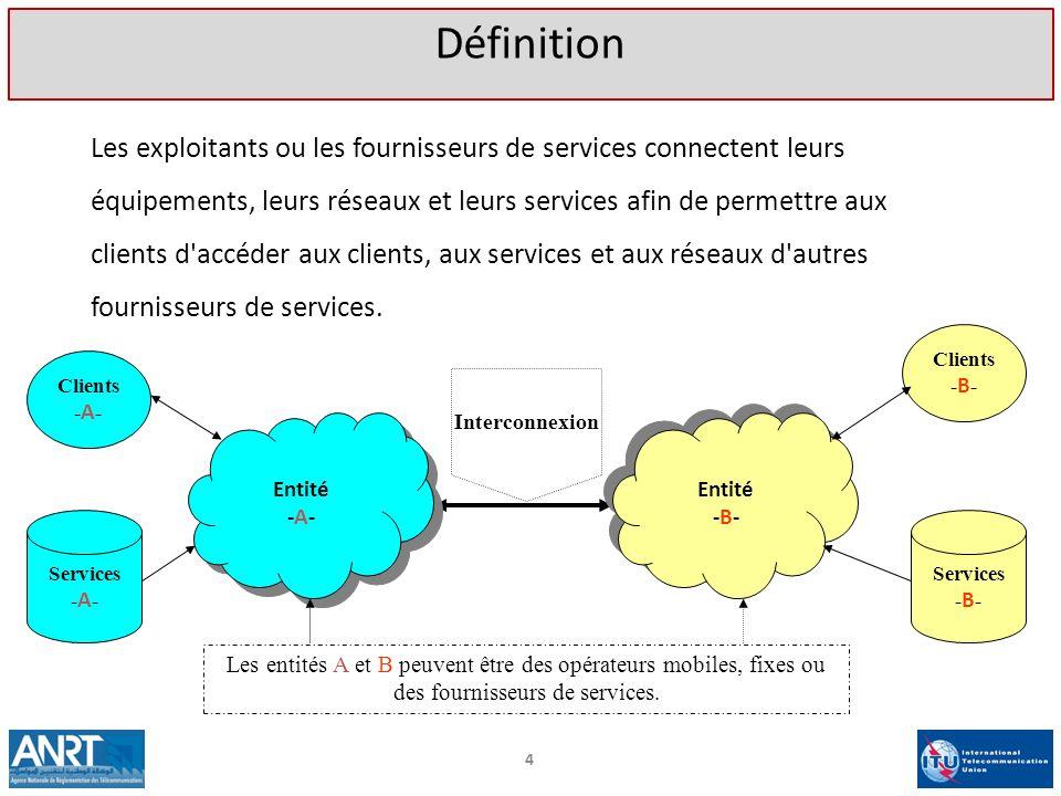 Les exploitants ou les fournisseurs de services connectent leurs équipements, leurs réseaux et leurs services afin de permettre aux clients d'accéder