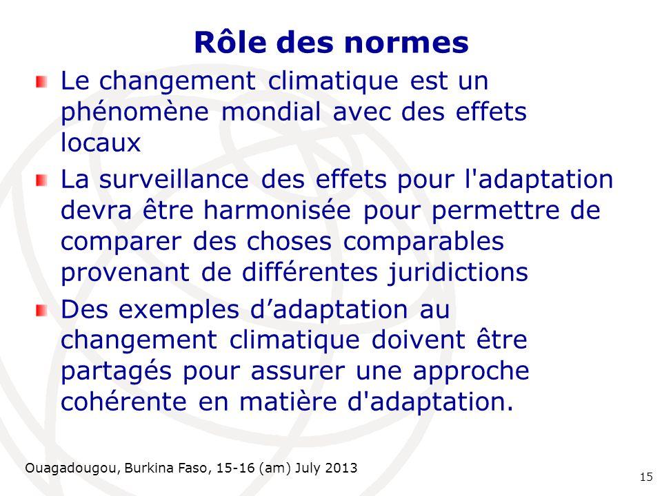 Ouagadougou, Burkina Faso, 15-16 (am) July 2013 Rôle des normes Le changement climatique est un phénomène mondial avec des effets locaux La surveillan