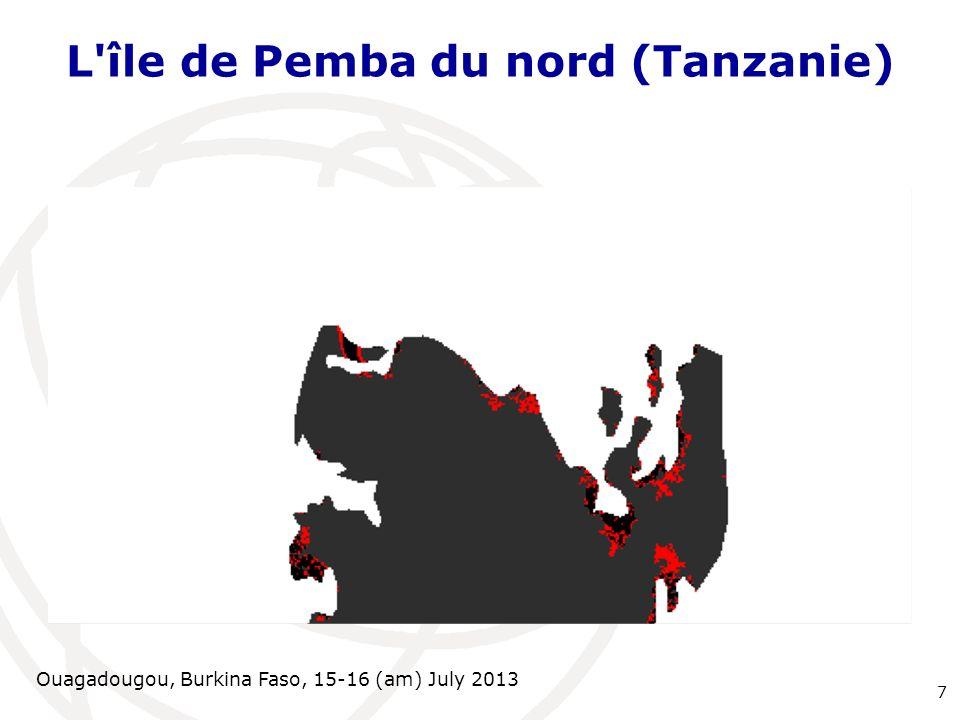 Ouagadougou, Burkina Faso, 15-16 (am) July 2013 L'île de Pemba du nord (Tanzanie) 7