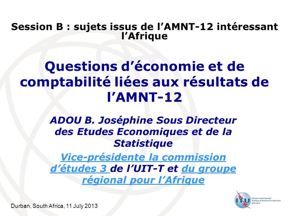 Durban, South Africa, 11 July 2013 Questions déconomie et de comptabilité liées aux résultats de lAMNT-12 ADOU B.