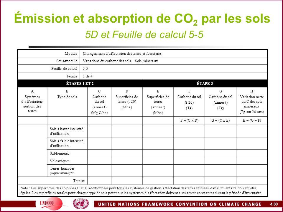 4.80 Émission et absorption de CO 2 par les sols 5D et Feuille de calcul 5-5 ModuleChangements daffectation des terres et foresterie Sous-moduleVariat
