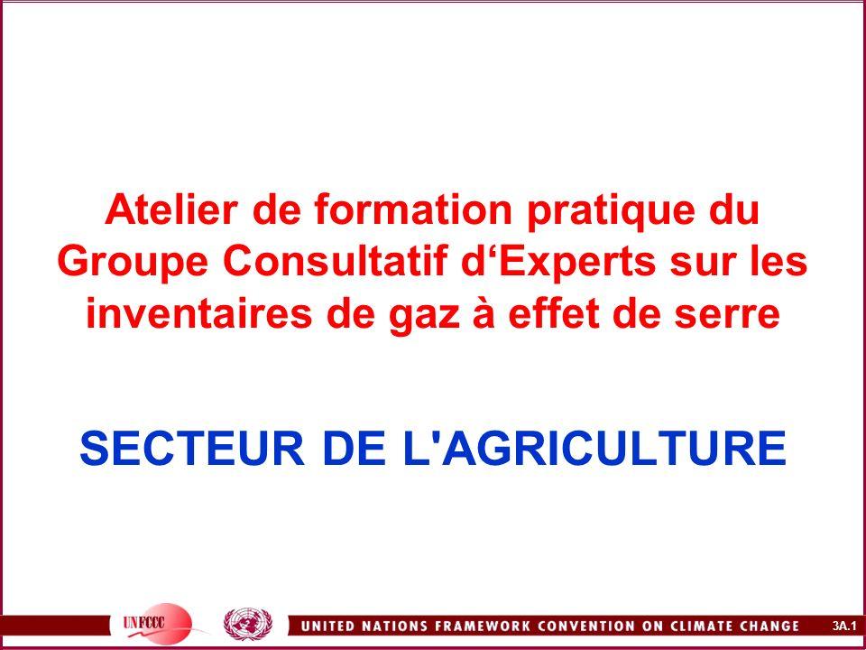 3A.1 Atelier de formation pratique du Groupe Consultatif dExperts sur les inventaires de gaz à effet de serre SECTEUR DE L'AGRICULTURE