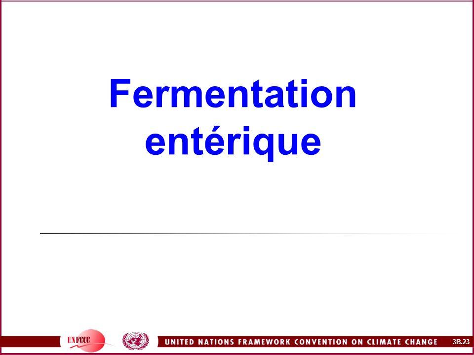 3B.23 Fermentation entérique