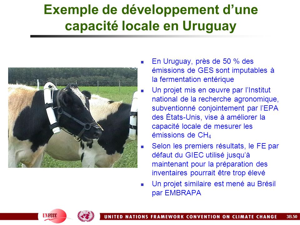 Exemple de développement dune capacité locale en Uruguay En Uruguay, près de 50 % des émissions de GES sont imputables à la fermentation entérique Un