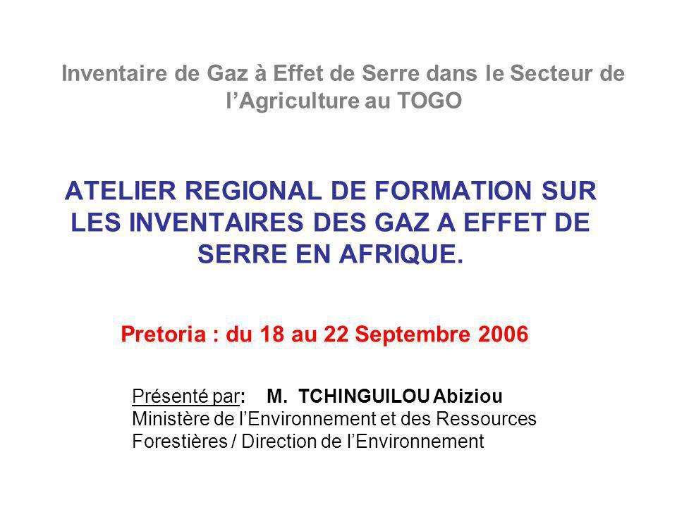 ATELIER REGIONAL DE FORMATION SUR LES INVENTAIRES DES GAZ A EFFET DE SERRE EN AFRIQUE. Pretoria : du 18 au 22 Septembre 2006 Présenté par: M. TCHINGUI