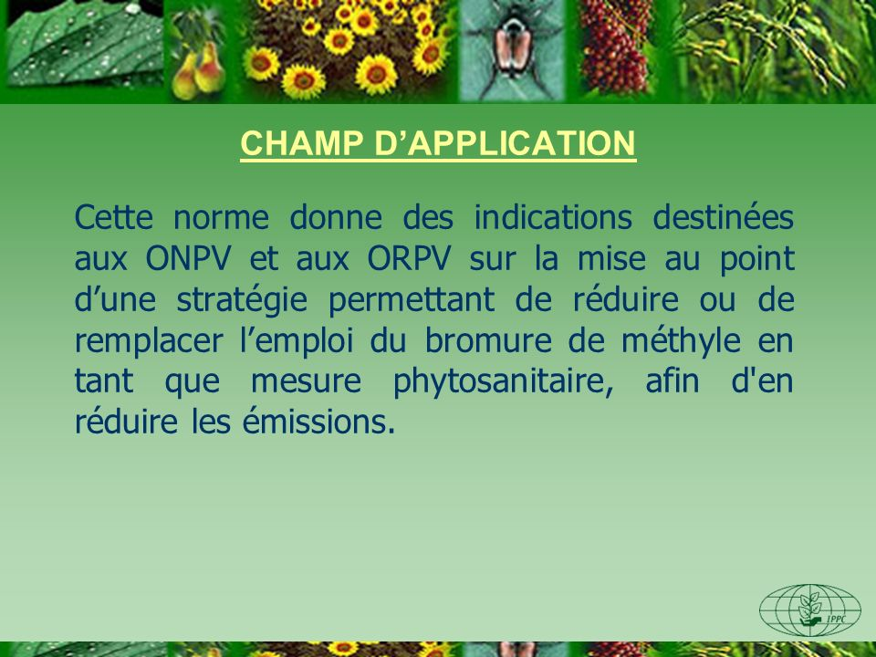 CHAMP DAPPLICATION Cette norme donne des indications destinées aux ONPV et aux ORPV sur la mise au point dune stratégie permettant de réduire ou de re
