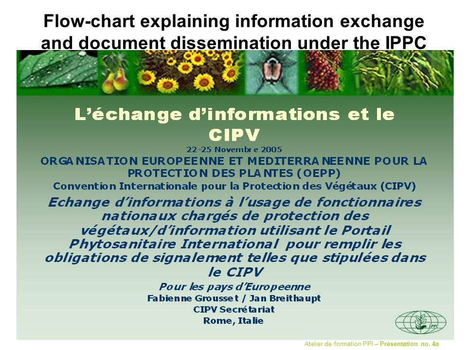 Flow-chart explaining information exchange and document dissemination under the IPPC Atelier de formation PPI – Présentation no.