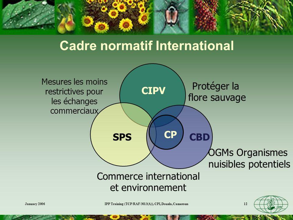 January 2006IPP Training (TCP/RAF/3013(A)), CPI, Douala, Cameroun12 CBD SPS CIPV Protéger la flore sauvage Commerce international et environnement Mes