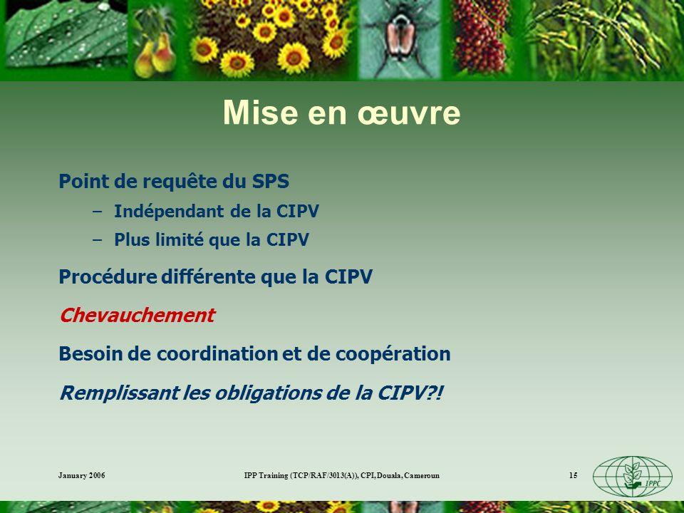 January 2006IPP Training (TCP/RAF/3013(A)), CPI, Douala, Cameroun15 Mise en œuvre Point de requête du SPS –Indépendant de la CIPV –Plus limité que la