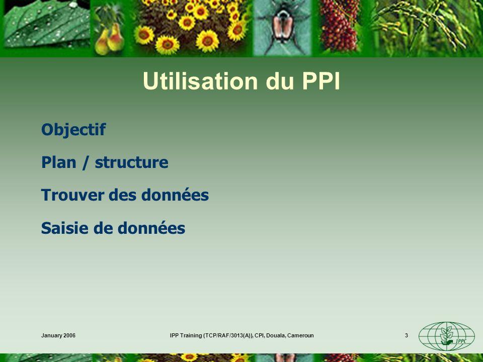 January 2006IPP Training (TCP/RAF/3013(A)), CPI, Douala, Cameroun3 Utilisation du PPI Objectif Plan / structure Trouver des données Saisie de données