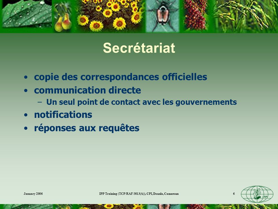 January 2006IPP Training (TCP/RAF/3013(A)), CPI, Douala, Cameroun6 Secrétariat copie des correspondances officielles communication directe –Un seul point de contact avec les gouvernements notifications réponses aux requêtes