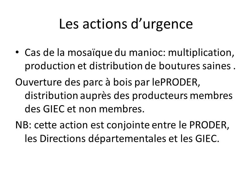 Les actions durgence Cas de la mosaïque du manioc: multiplication, production et distribution de boutures saines. Ouverture des parc à bois par lePROD