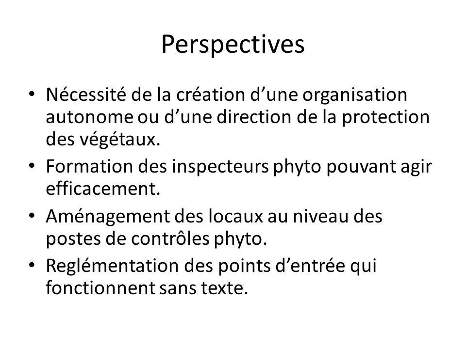 Perspectives Nécessité de la création dune organisation autonome ou dune direction de la protection des végétaux. Formation des inspecteurs phyto pouv