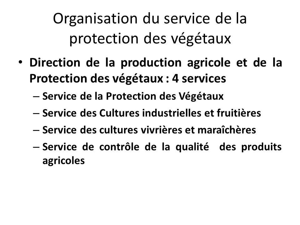 Organisation du service de la protection des végétaux Direction de la production agricole et de la Protection des végétaux : 4 services – Service de l