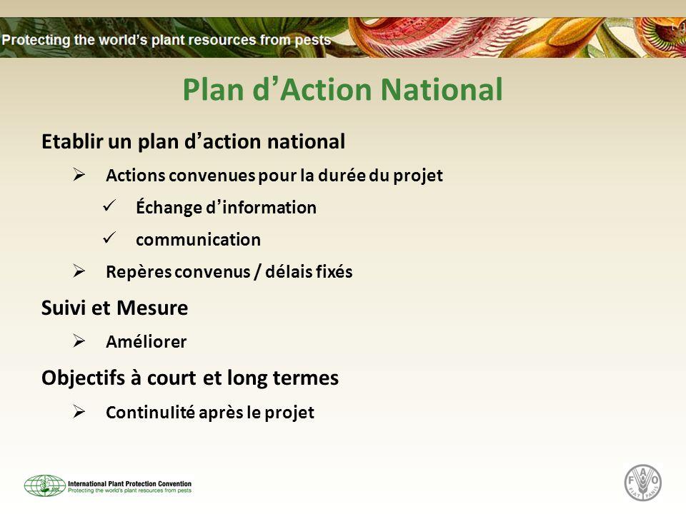 Plan dAction National Etablir un plan daction national Actions convenues pour la durée du projet Échange dinformation communication Repères convenus /