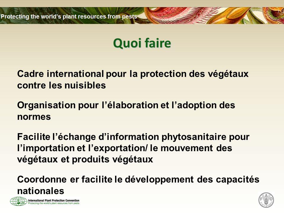 Quoi faire Cadre international pour la protection des végétaux contre les nuisibles Organisation pour lélaboration et ladoption des normes Facilite léchange dinformation phytosanitaire pour limportation et lexportation/ le mouvement des végétaux et produits végétaux Coordonne er facilite le développement des capacités nationales