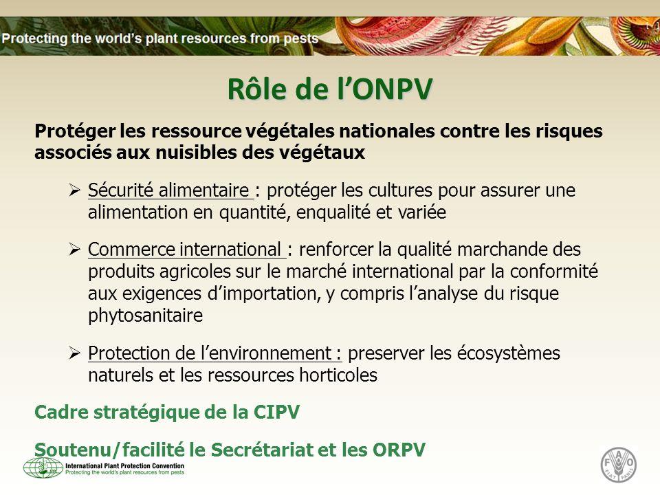 Secrétariat Hébergé par la FAO à Rome, Italie Mets en oeuvre le programme de de travail de CMP Appuie le développement des NIMPs Facilite léchange dinformation Coordonne et facilite le programme de développement des capacités Facilite le règlement des différends Represente la CIPV