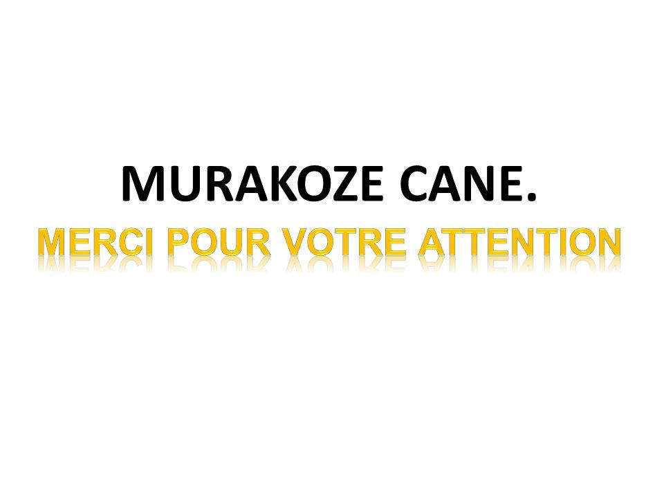 MURAKOZE CANE.