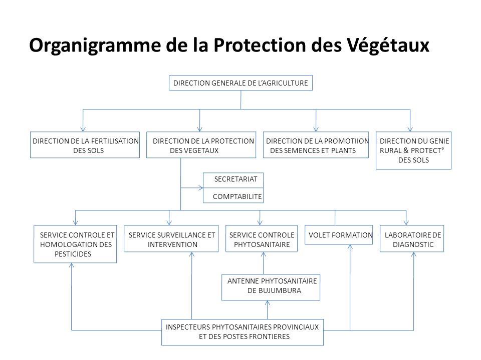Organigramme de la Protection des Végétaux DIRECTION GENERALE DE LAGRICULTURE DIRECTION DE LA FERTILISATION DIRECTION DE LA PROTECTION DIRECTION DE LA