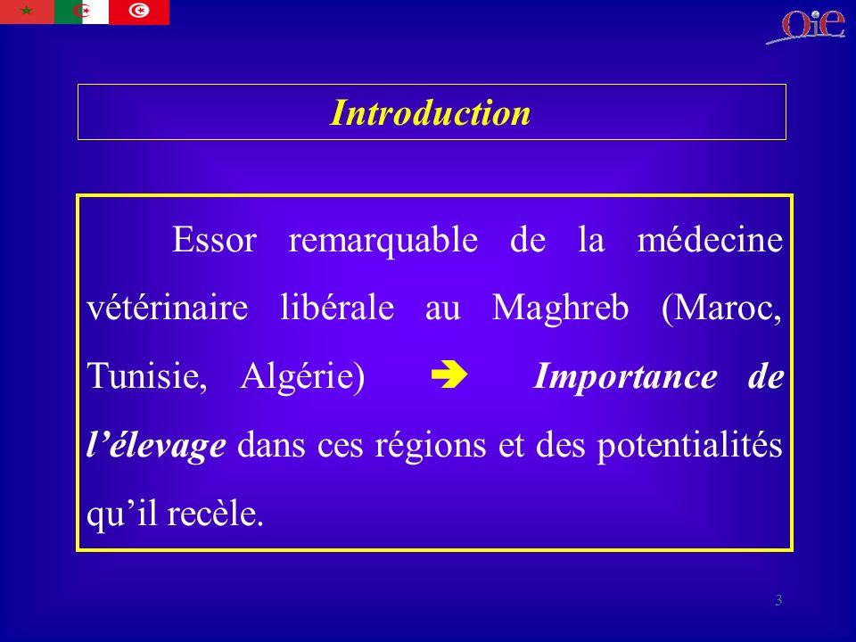 3 Essor remarquable de la médecine vétérinaire libérale au Maghreb (Maroc, Tunisie, Algérie) Importance de lélevage dans ces régions et des potentialités quil recèle.
