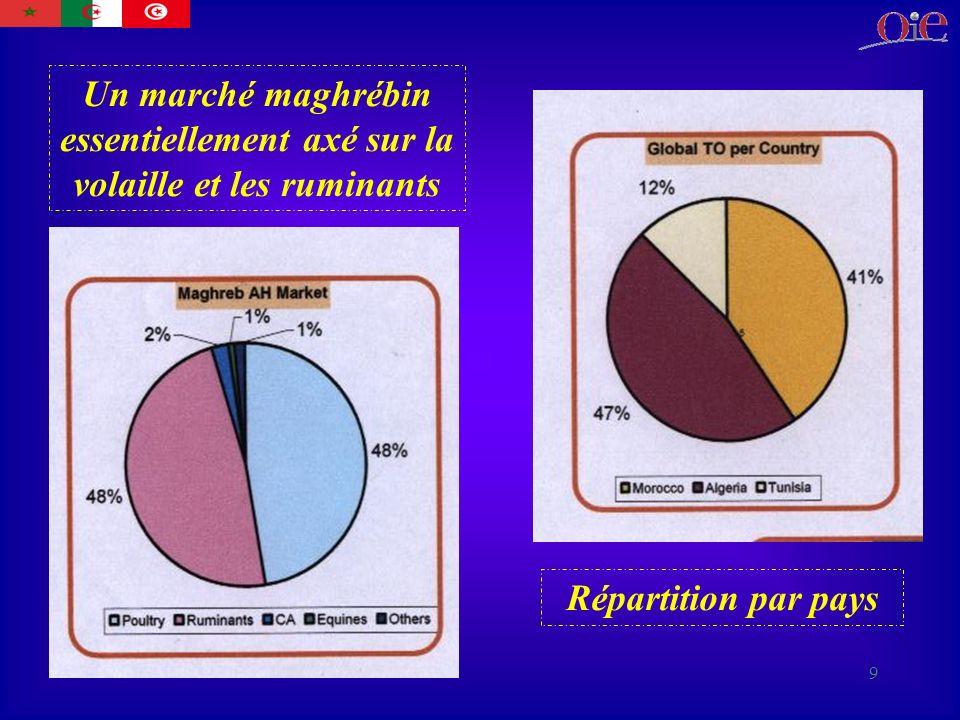 9 Un marché maghrébin essentiellement axé sur la volaille et les ruminants Répartition par pays