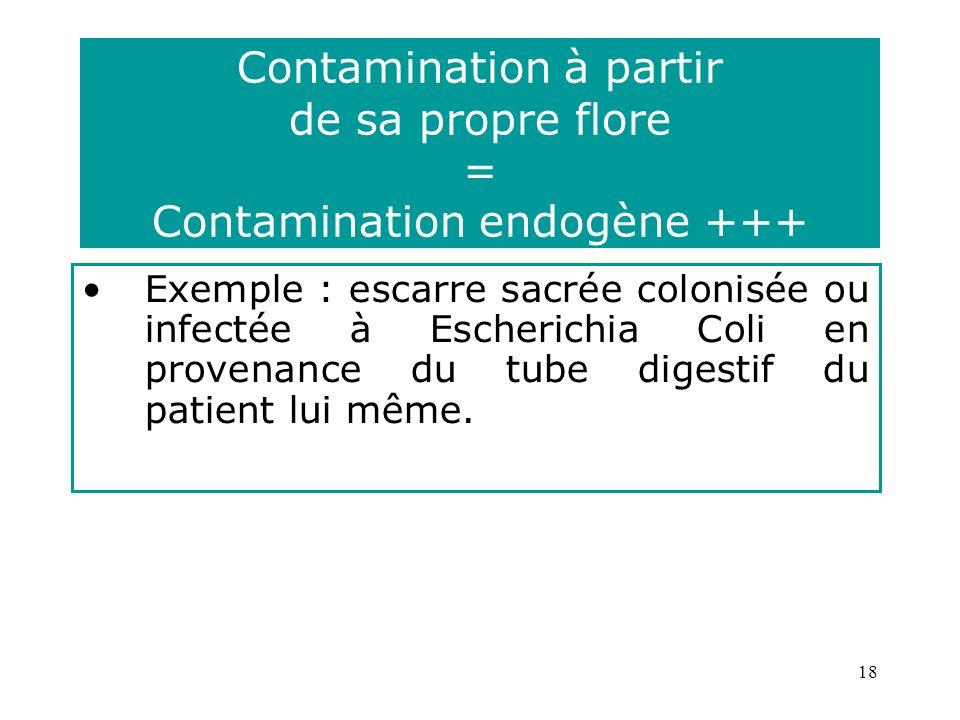 18 Contamination à partir de sa propre flore = Contamination endogène +++ Exemple : escarre sacrée colonisée ou infectée à Escherichia Coli en provenance du tube digestif du patient lui même.