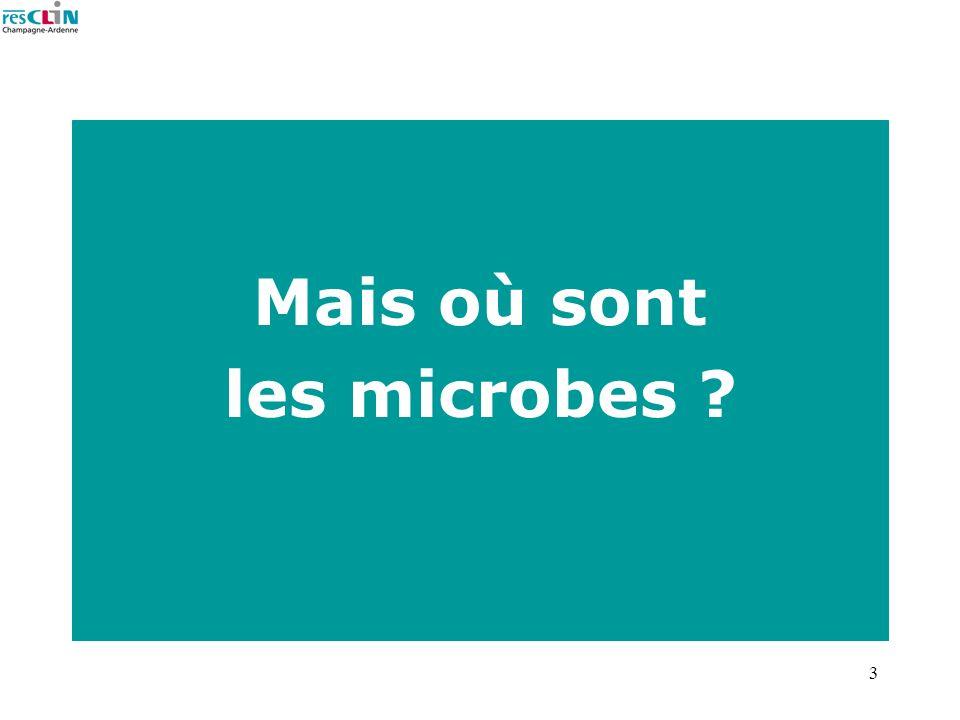 3 Mais où sont les microbes ?