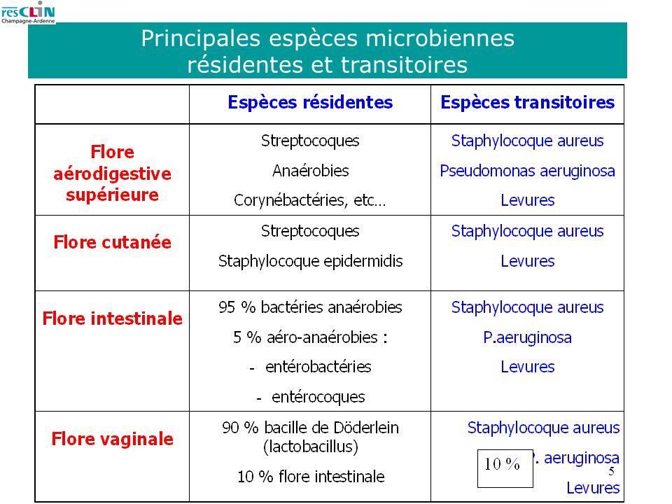5 Principales espèces microbiennes résidentes et transitoires
