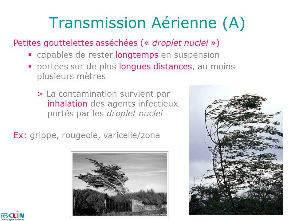 11 Transmission Aérienne (A) > La contamination survient par inhalation des agents infectieux portés par les droplet nuclei Petites gouttelettes asséc