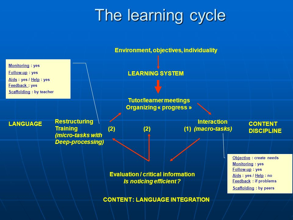 The learning cycle Environment, objectives, individuality LEARNING SYSTEM Tutor/learner meetings Organizing « progress » Interaction (macro-tasks) CONTENT DISCIPLINE Evaluation / critical information Is noticing efficient .