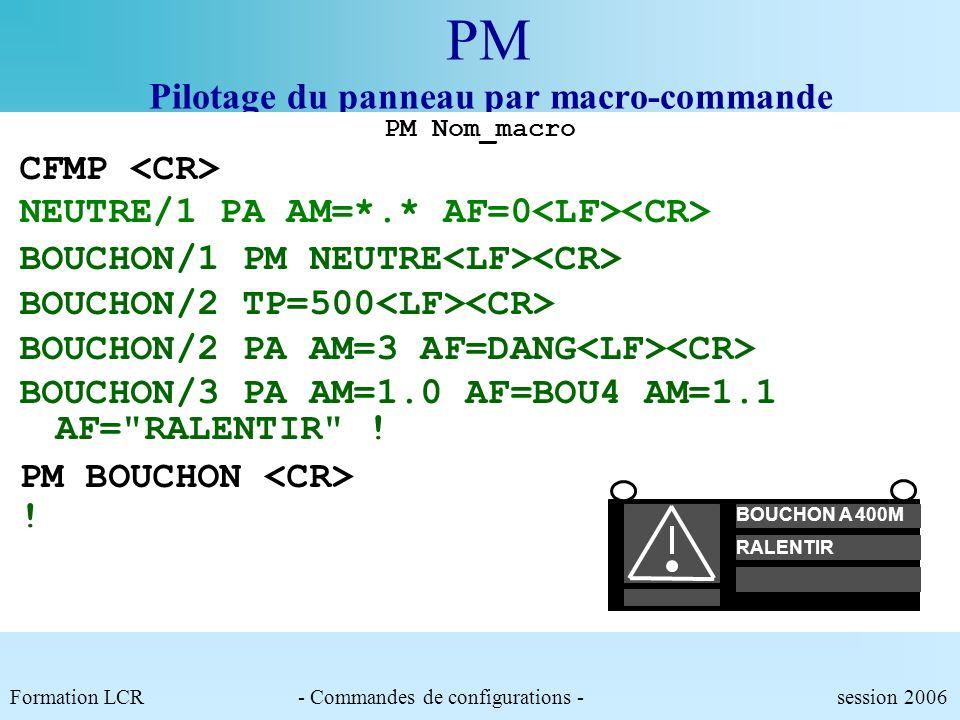 P1 Pilotage du panneau Paramètres modifiables :.AM : Adresse du ou des modules à piloter (*utilisable pour désigner une groupe de modules pilotables).