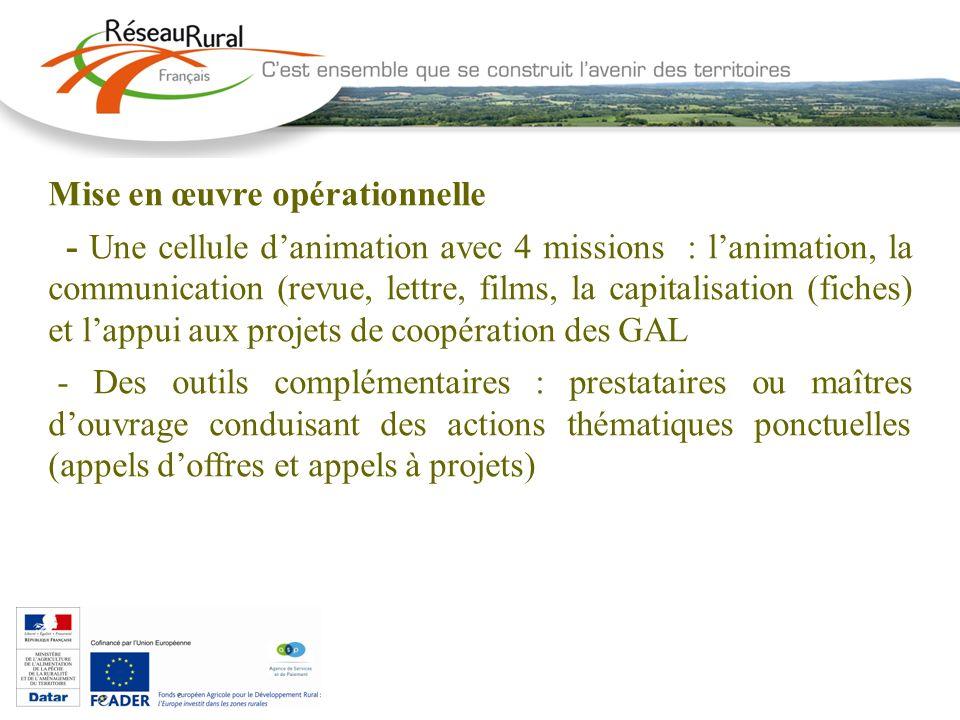 Mise en œuvre opérationnelle - Une cellule danimation avec 4 missions : lanimation, la communication (revue, lettre, films, la capitalisation (fiches)