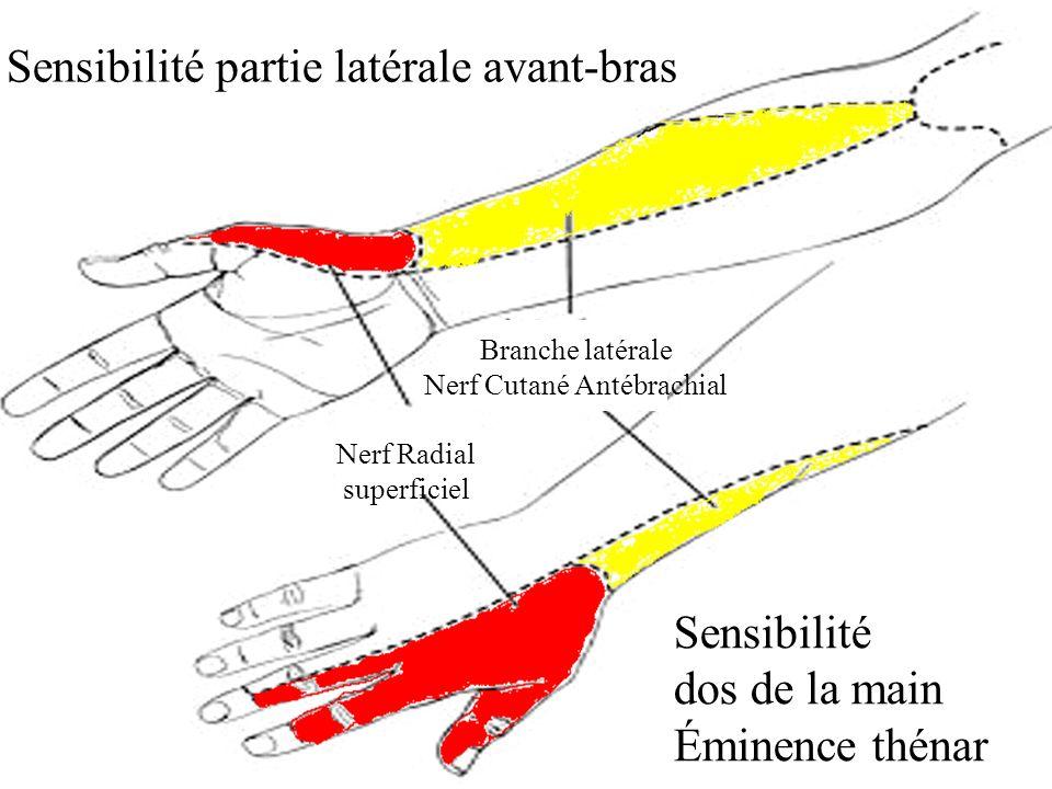 Echo-doppler artériel 1- Hypoplasie, absence, occlusion artère ulnaire (AU) 2- Diamètre int < 2 mm AU 3- Calcification sévère et diffuse artère radiale (AR) 4- Diamètre int < 2 mm AR 1- Absence de flux dans tabatière anatomique = a.